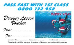Christmas voucher Dolphin